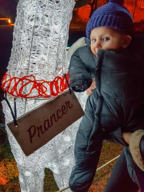 Emlyn found his reindeer, Prancer.
