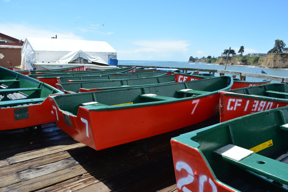 Red Boats.JPG