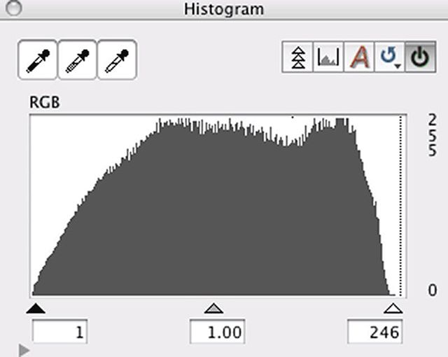 The Mother of all Histograms! 510 Pyro and Ilford HP5 is a perfect combo!