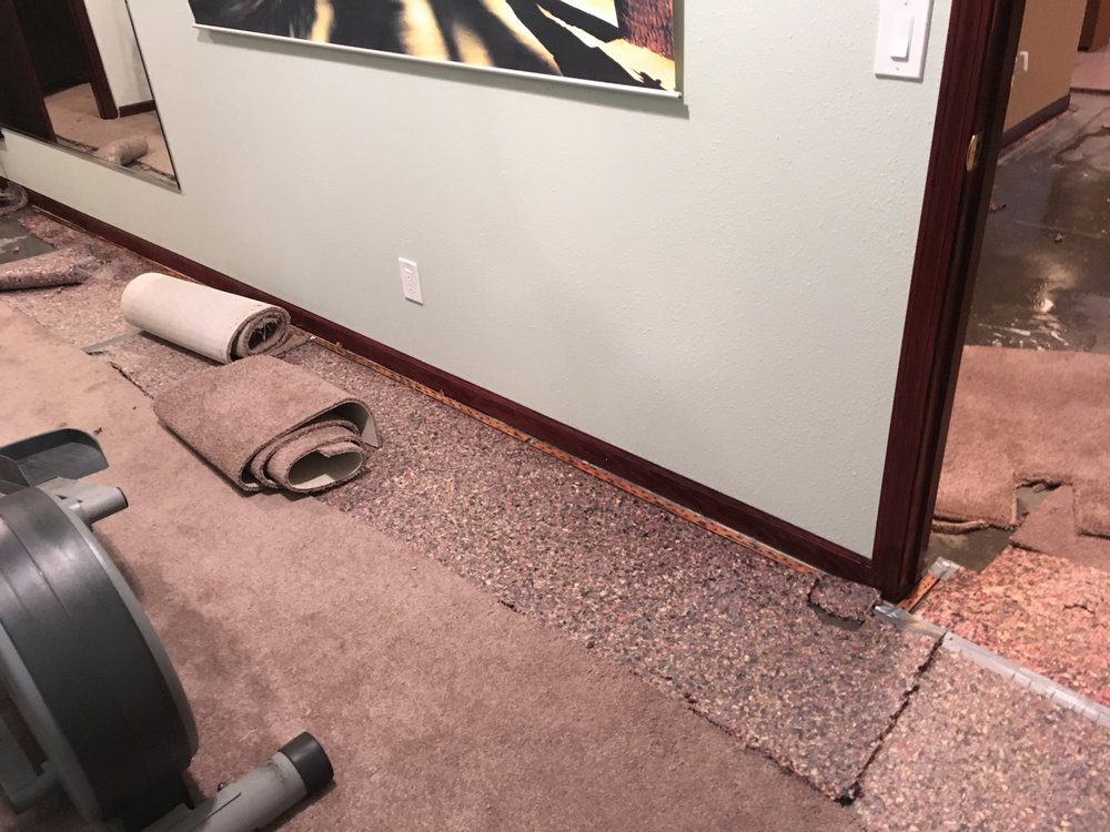 Carpet Removal : Water Damage.JPG
