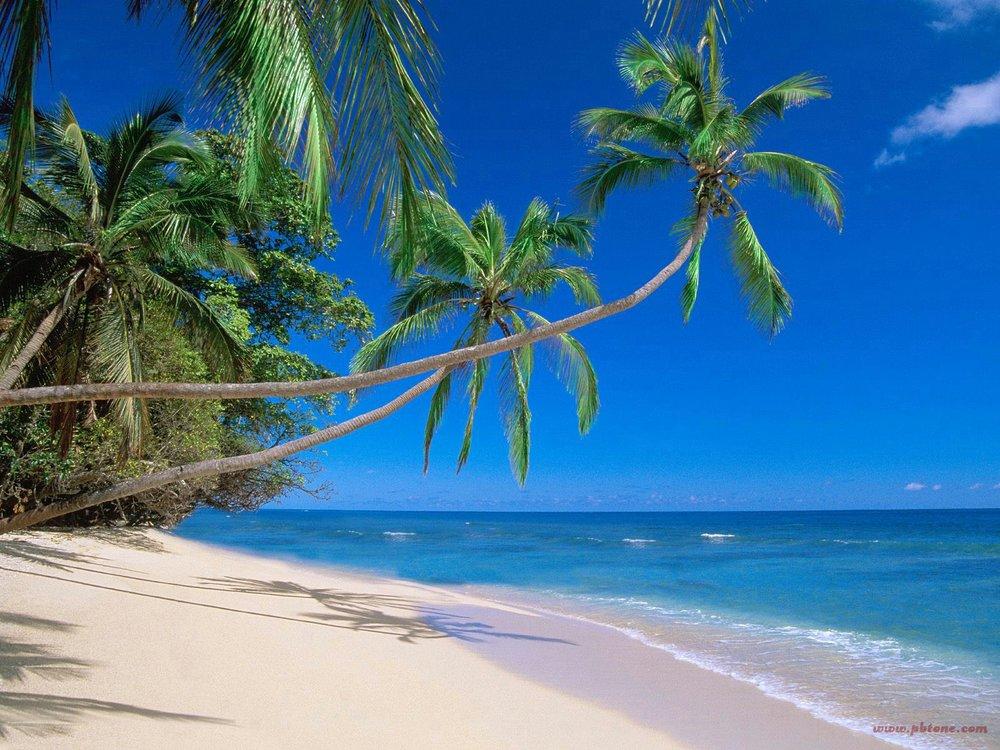 hawaiian-beach-hawaii.jpg