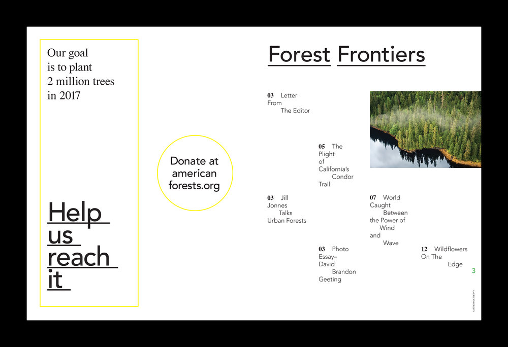 American Forests Redesign comps-2.jpg