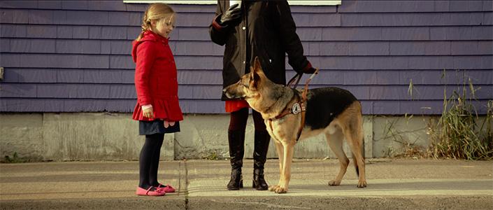 Dogged-Still4 - André Pettigrew.jpg