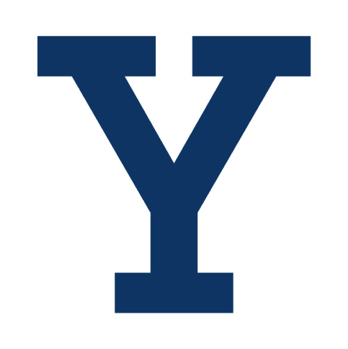 Yale Bulldogs Logo Iron-on Transfers (Heat Transfers) N7093.jpg