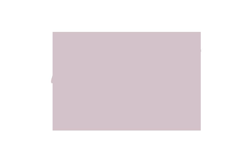 manifestoHeader.png