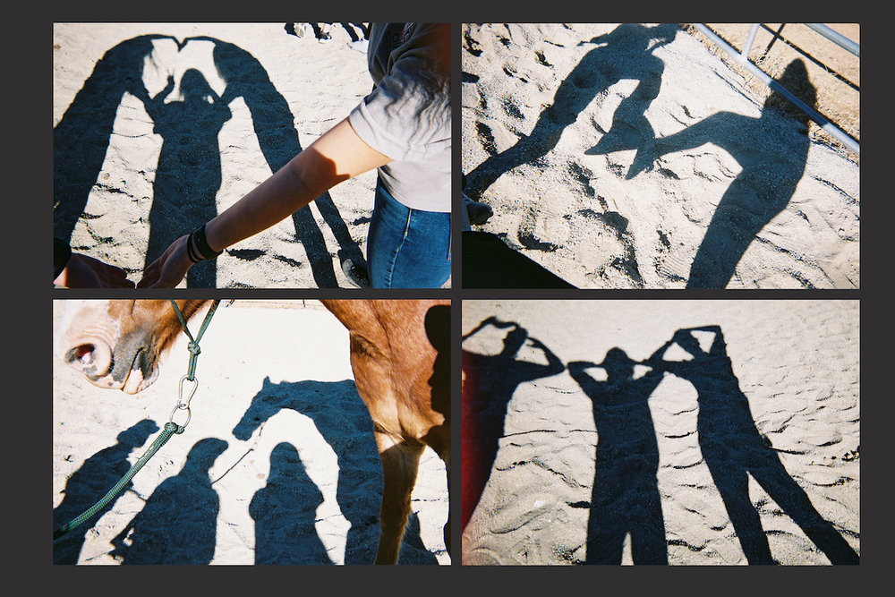 Having fun with shadow pictures while on Field Trip.jpg