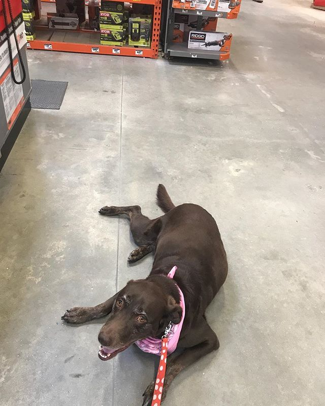 Hanging out in @homedepot picking up some stuff for my dad!