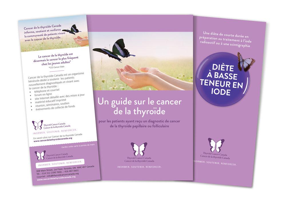 De gauche à droite : Fiche d'information, Guide du patient pour le cancer de la thyroïde de 32 pages et livret Diète à basse teneur en iode de 20 pages.