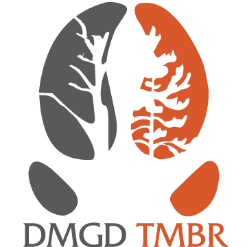 DMGD-TMBR-Logo-Grey-and-Orange.png