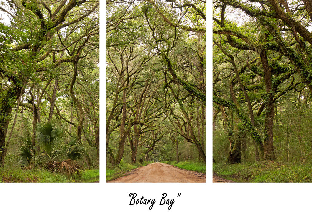 Botany Bay.jpg