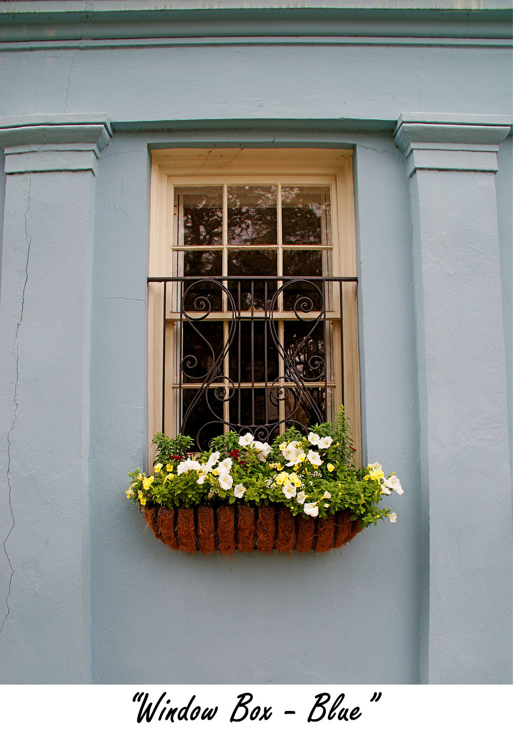 windowbox Blue.jpg