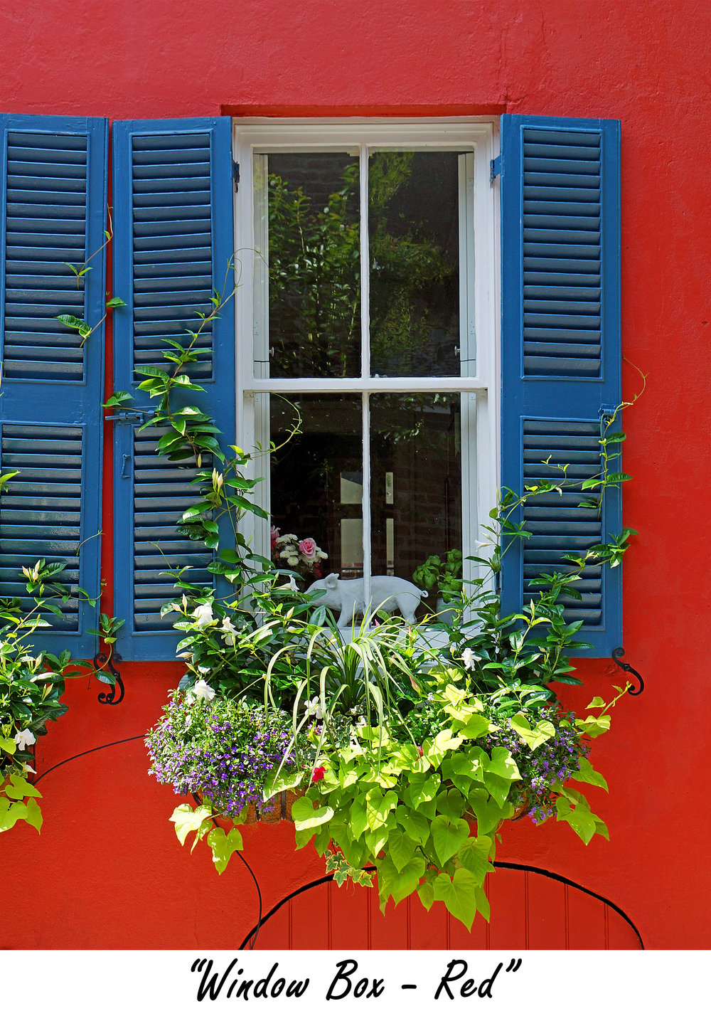 windowbox Red.jpg