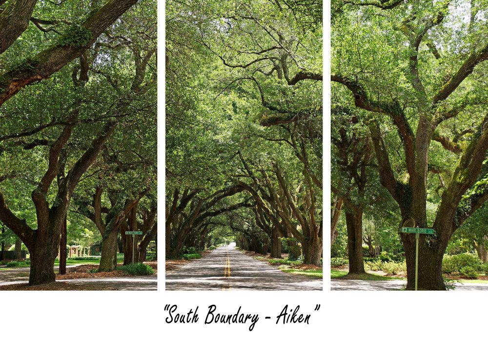 South Boundary.jpg