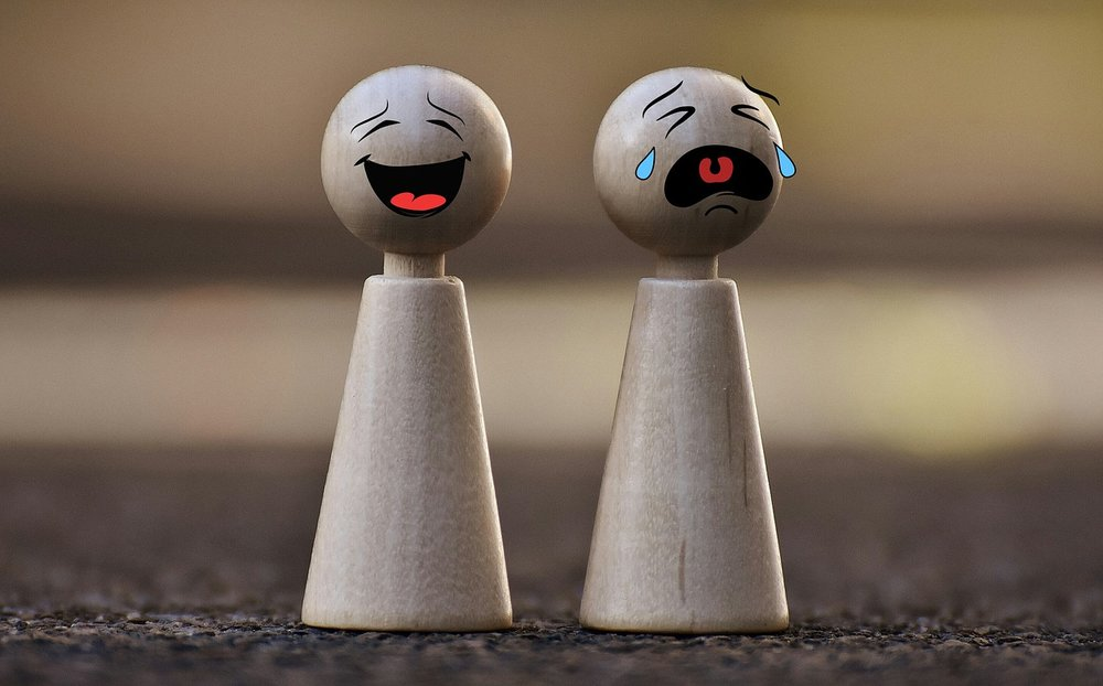 Fig-Cry-Toys-Laugh-Funny-Smilies-Game-Characters-1744210.jpg