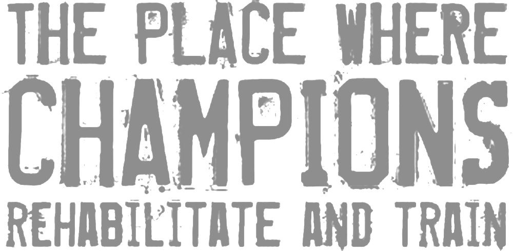 ChampionsLogo-GREY.png
