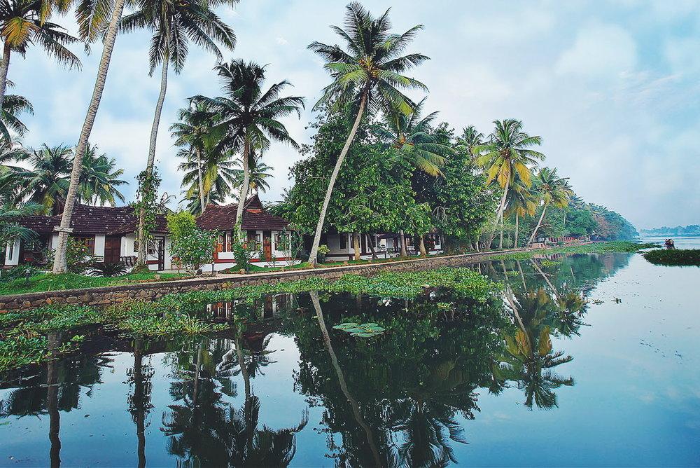 Petit paradis sur une île - Philipkutty's Farm