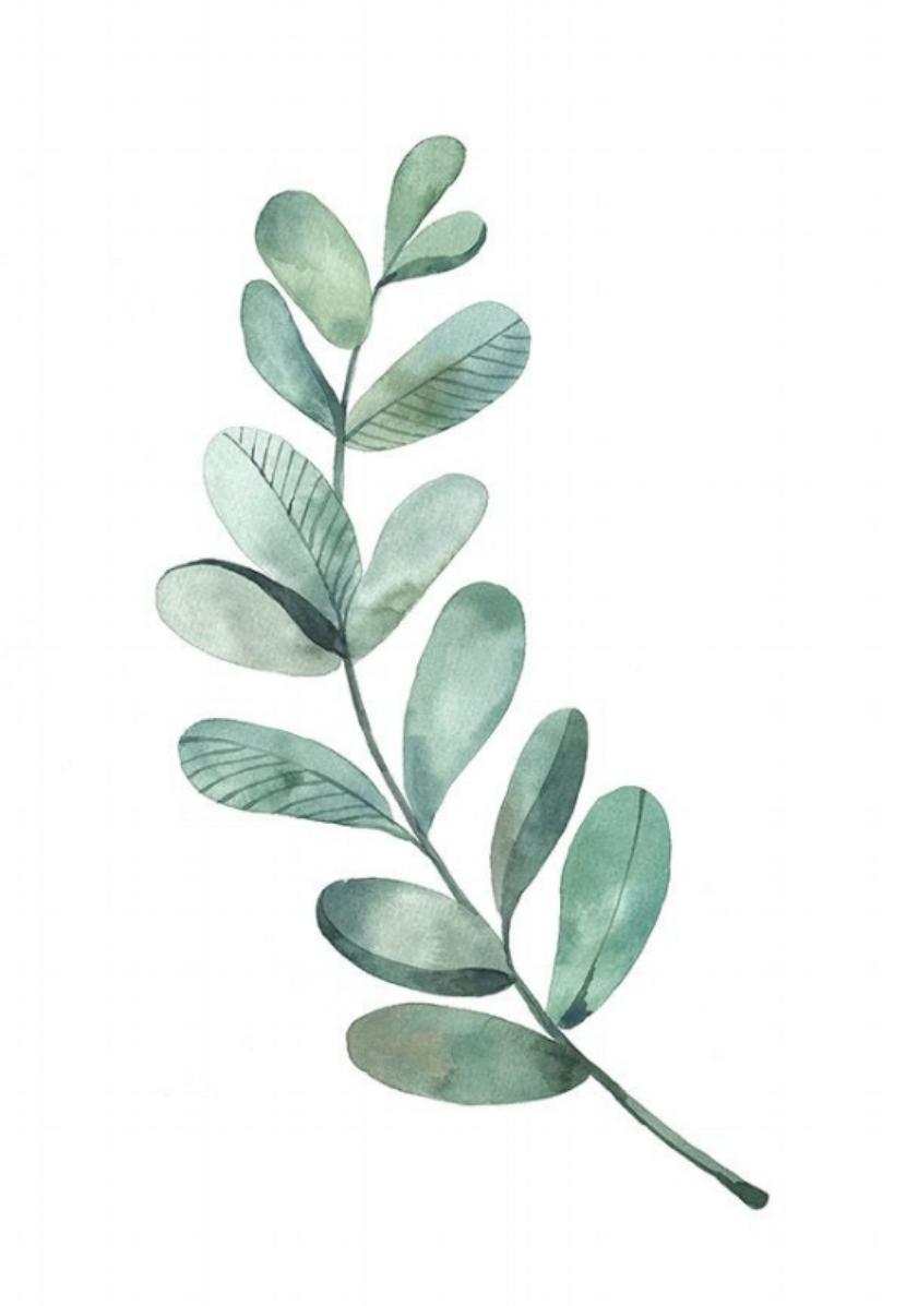 Morgan B Leaf.jpg