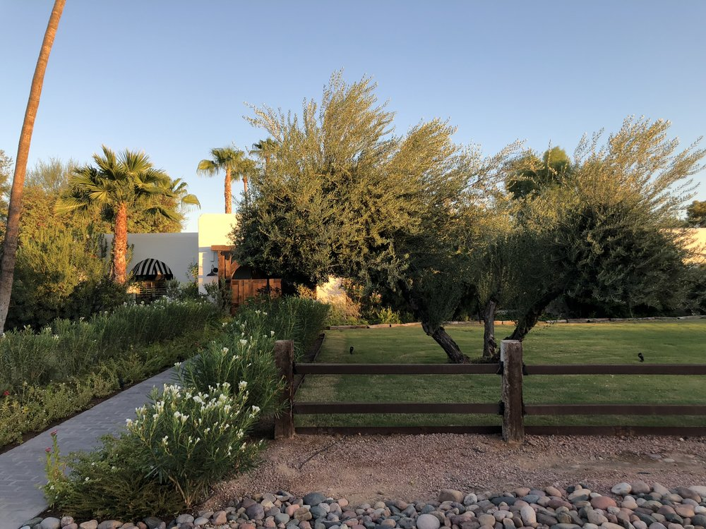 Southwest Ranch House - 2019 - Design & Furnishing Project