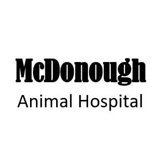current network alliance animal health