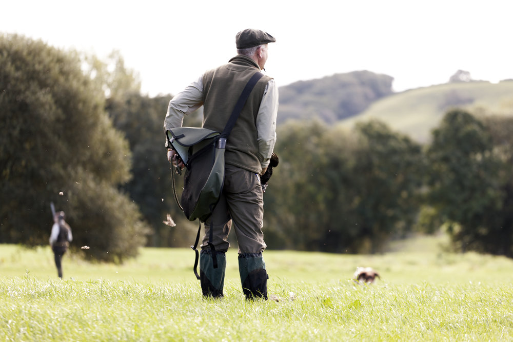 Group Gundog Training -