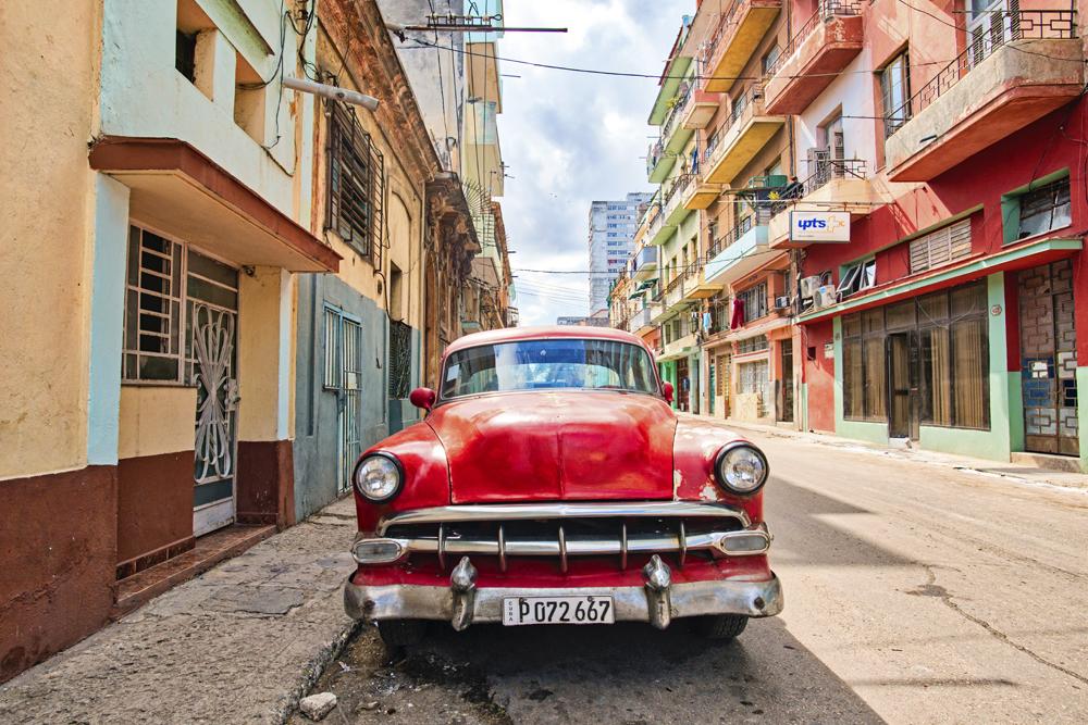 Peter Mercieca Cuba 9376 .jpg