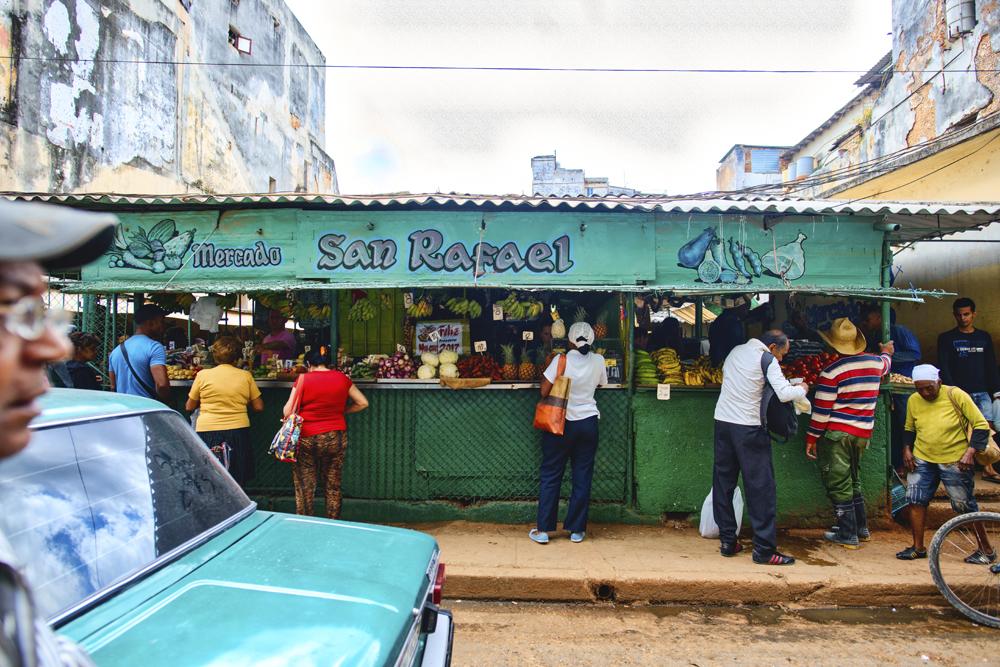 Peter Mercieca Cuba 9509 .jpg