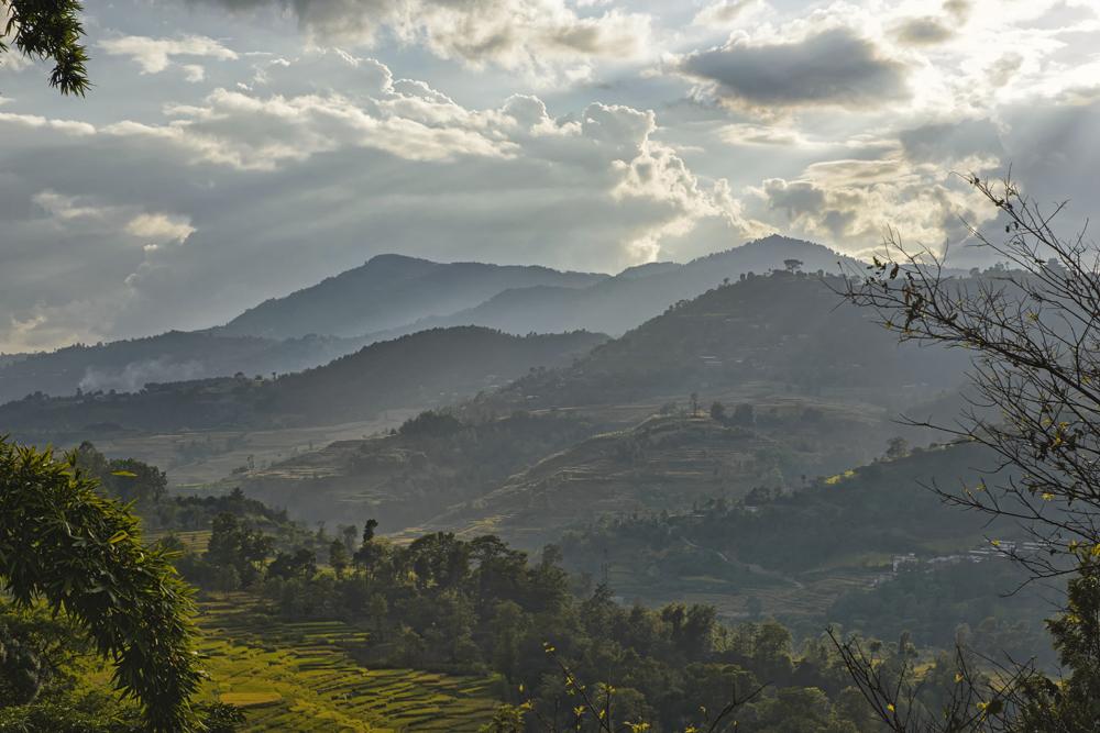 Peter Mercieca Bungamati Nepal 7248 .jpg