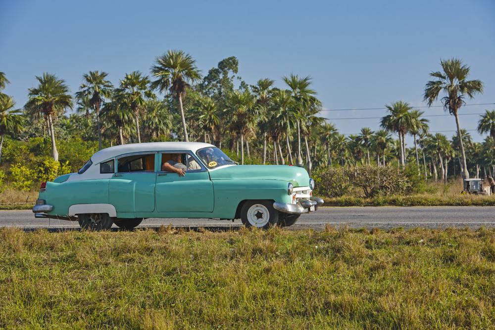 Peter Mercieca Cuba 5991 .jpg