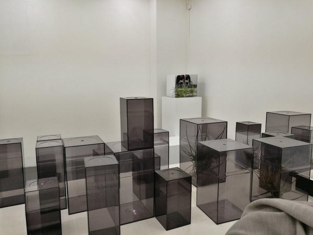 alejandro medina - project room 14.jpg