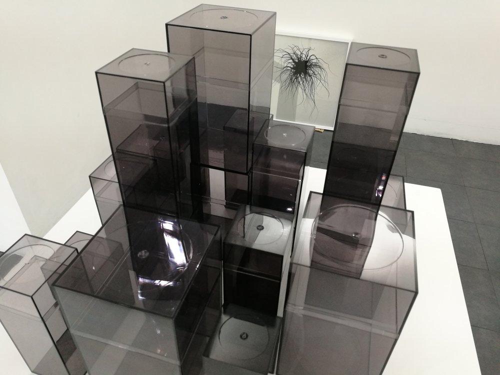 alejandro medina - project room 18.jpg