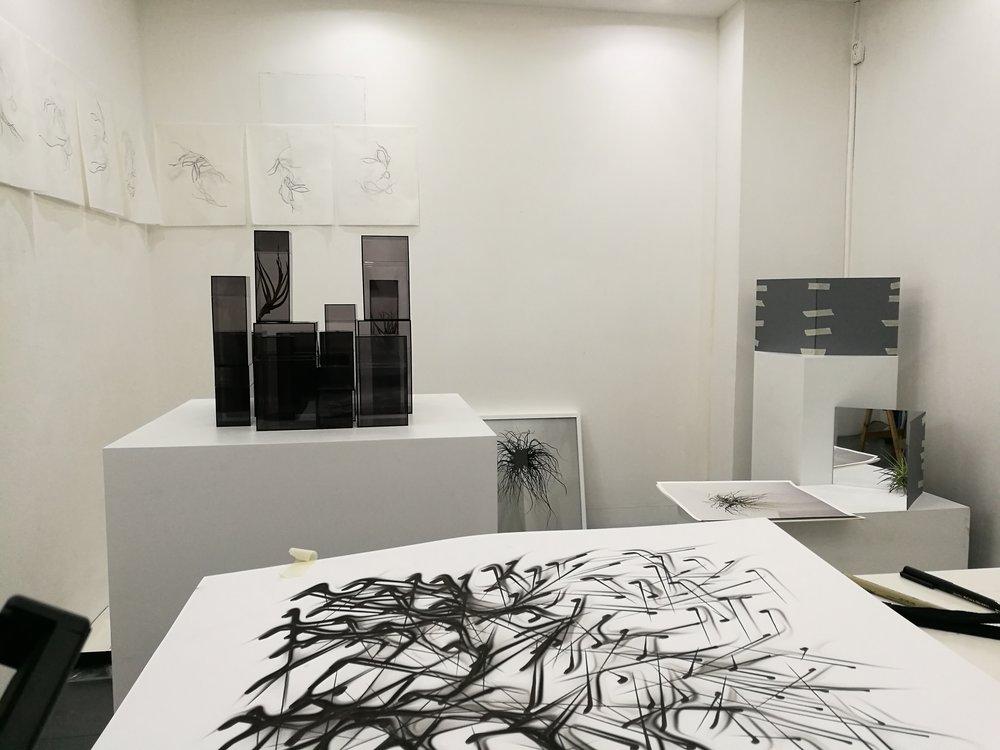 alejandro medina - project room 48.jpg