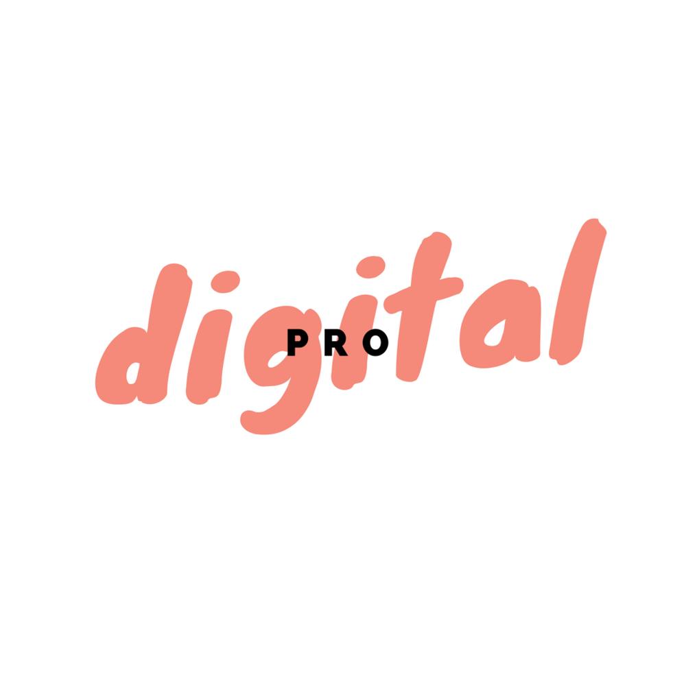 digitalpro_ap.png