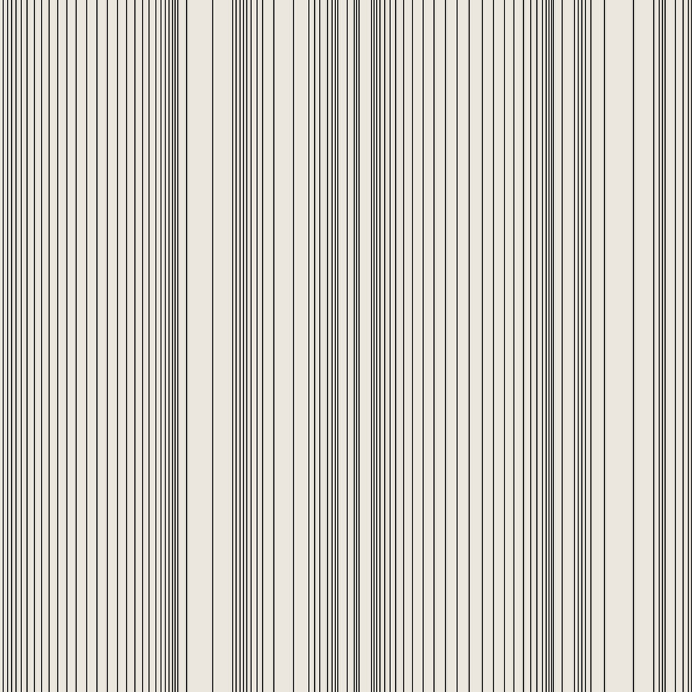 Encoded Stripe - Black and White
