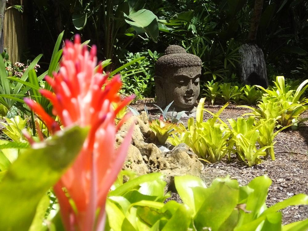 sanctuary buddha.jpg