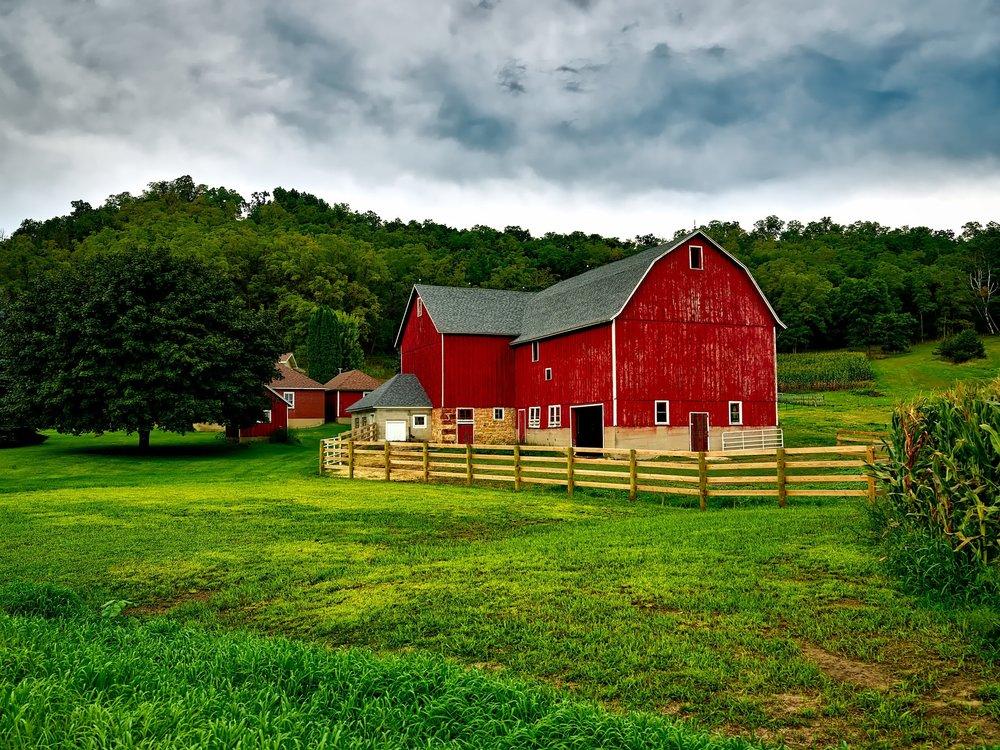 amish farm tour included