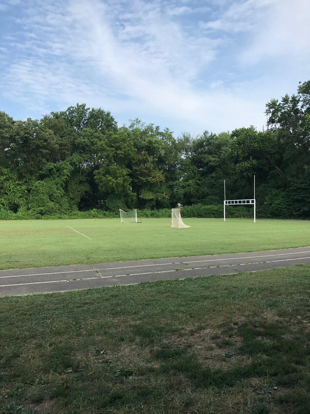 The field and goals at the Club