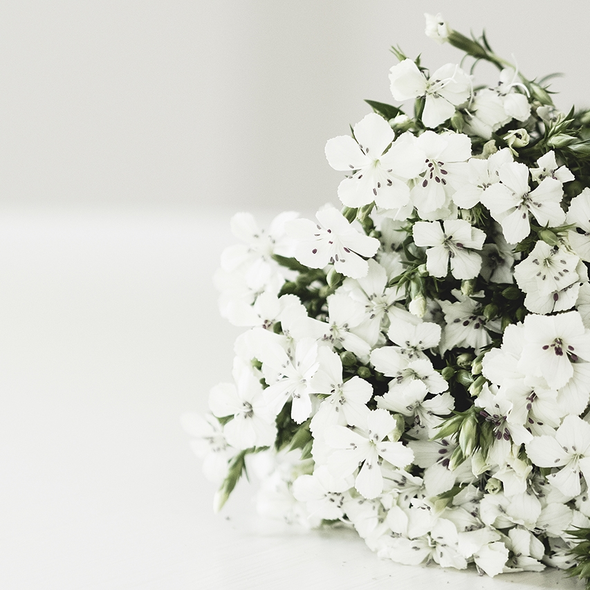 Everyday flowers light 5-2.jpg