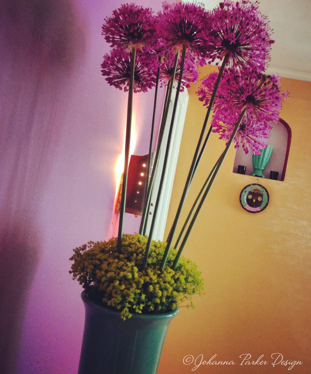 Aliums in vase