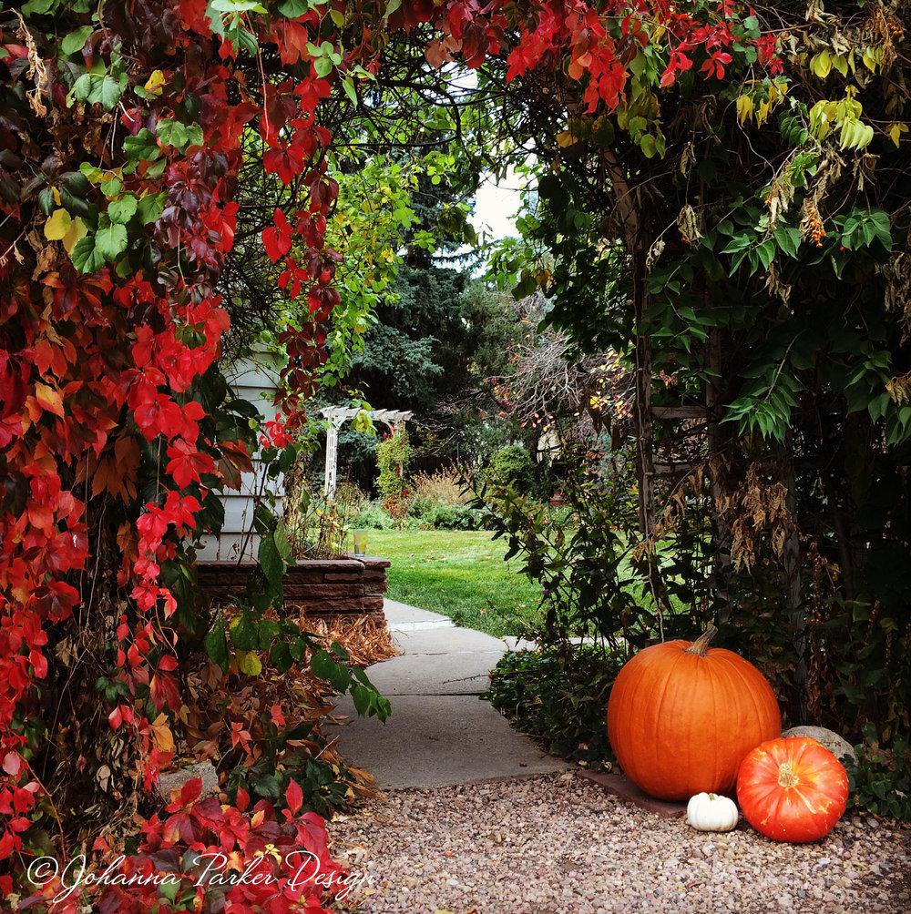 Autumn garden entry
