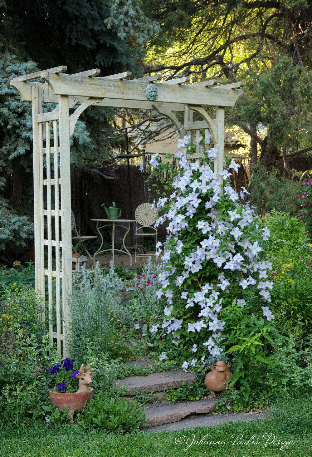 Garden arbor with clematis