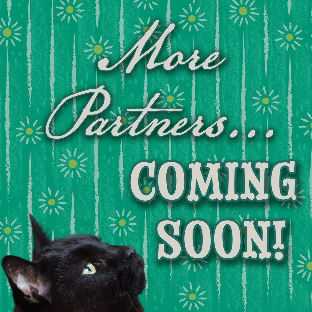 More-Parners-Coming-Soon-spring-v2.jpg