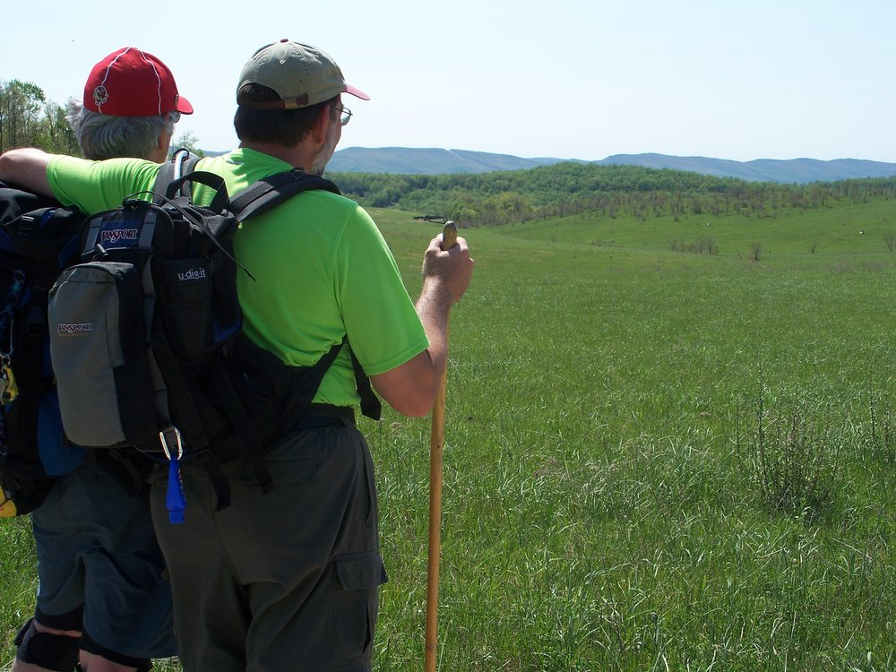 Hikers watch bobolinks and view Briery Mtn. from a hay meadow in Preston County, WV - By Doug Wood