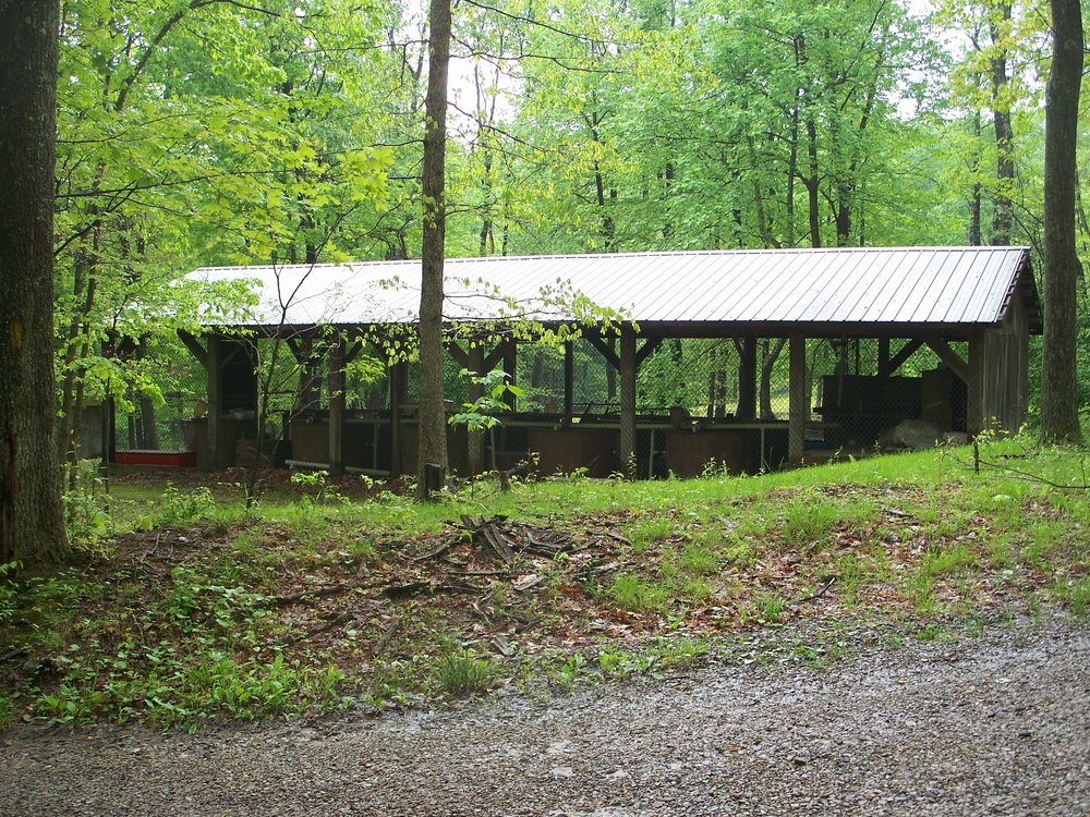 S1 Trout shed on Briery Mtn - By Doug Wood