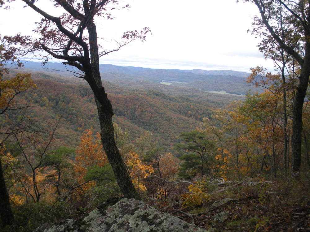 S3 Overlook of Anthony Ck valley from S end of Meadow Ck Mtn.JPG