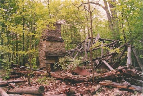 Seneca Spring Shelter Ruins