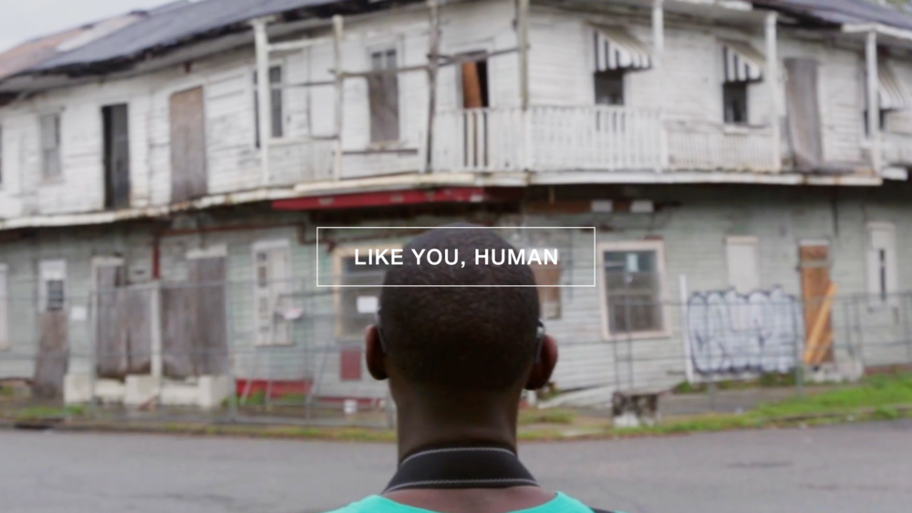 LIKE YOU, HUMAN / DOCUMENTARY
