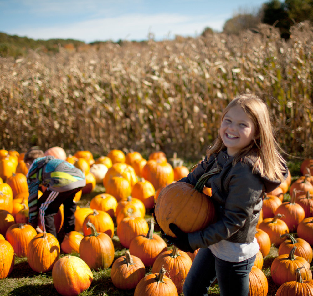 pumpkin-girl-1.jpg