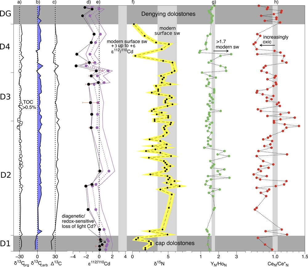 "Cadmium isotope variations in Neoproterozoic carbonates - A tracer of biologic production? - Cadmium concentrations and stable isotopic compositions in seawater are important tools for studying the biogeochemical cycling of Cd in the modern oceans and as a proxy for micronutrient utilisation by phytoplankton. It is now well established that Cd isotopes become ""heavier"" as the primary production in the surface ocean increases, even though the mechanism driving the isotopic fractionation is still debated. Here, we use this property of Cd isotopes to examine changes that took place in the oceans during the emergence of multicellular life in the Neoproterozoic. Isotopic compositions and concentrations of Cd, N and C are reported in shallow-water carbonates of Ediacaran age from the Xiaofenghe section on the Yangtze Platform, South China. The Cd isotope data - reported as ε112/110Cd - show positive excursions in the cap dolomites, while significantly lighter Cd is found in the overlying strata. After correction for salinity-controlled fractionation into inorganic calcite, calculated palaeo-seawater ε112/110Cdsw range from -2 to +1.5, overlapping values of modern surface seawater. Importantly, ε112/110Cdsw and δ13C show a general positive correlation, as would be expected in bio-productive environments. However, the trend to lighter ε112/110Cd up-section is not that explicitly expected for an ""explosion of life"" at the end of the Ediacaran. The upper Doushantuo also displays substantial fluctuations in REE abundances, δ15N and δ13C, which may be due to estuarine mixing. Our data suggest that the variations in ε112/110Cd are a result of biologically-induced fractionation in at least some of the Ediacaran carbonates at Xiaofenghe. Further Cd isotope fractionation processes are clearly playing a role as well, such as precipitation of sulphides under anoxic pore-water conditions and fractionation into inorganic carbonates under variable salinity conditions. These effects have to be evaluated carefully when using Cd isotope systematics in ancient marine carbonates to look for palaeo-productivity signals."