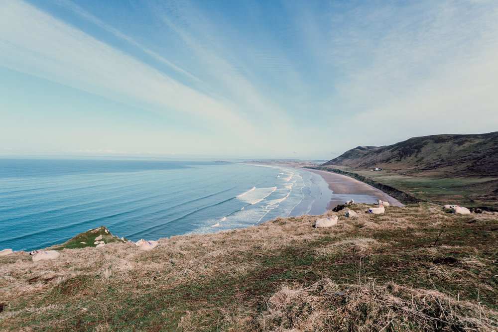 Swansea-2565.jpg