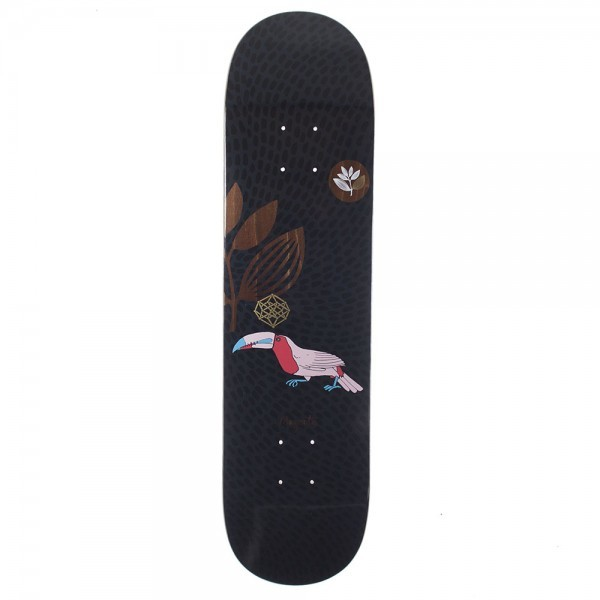 toucan-black-board.jpg